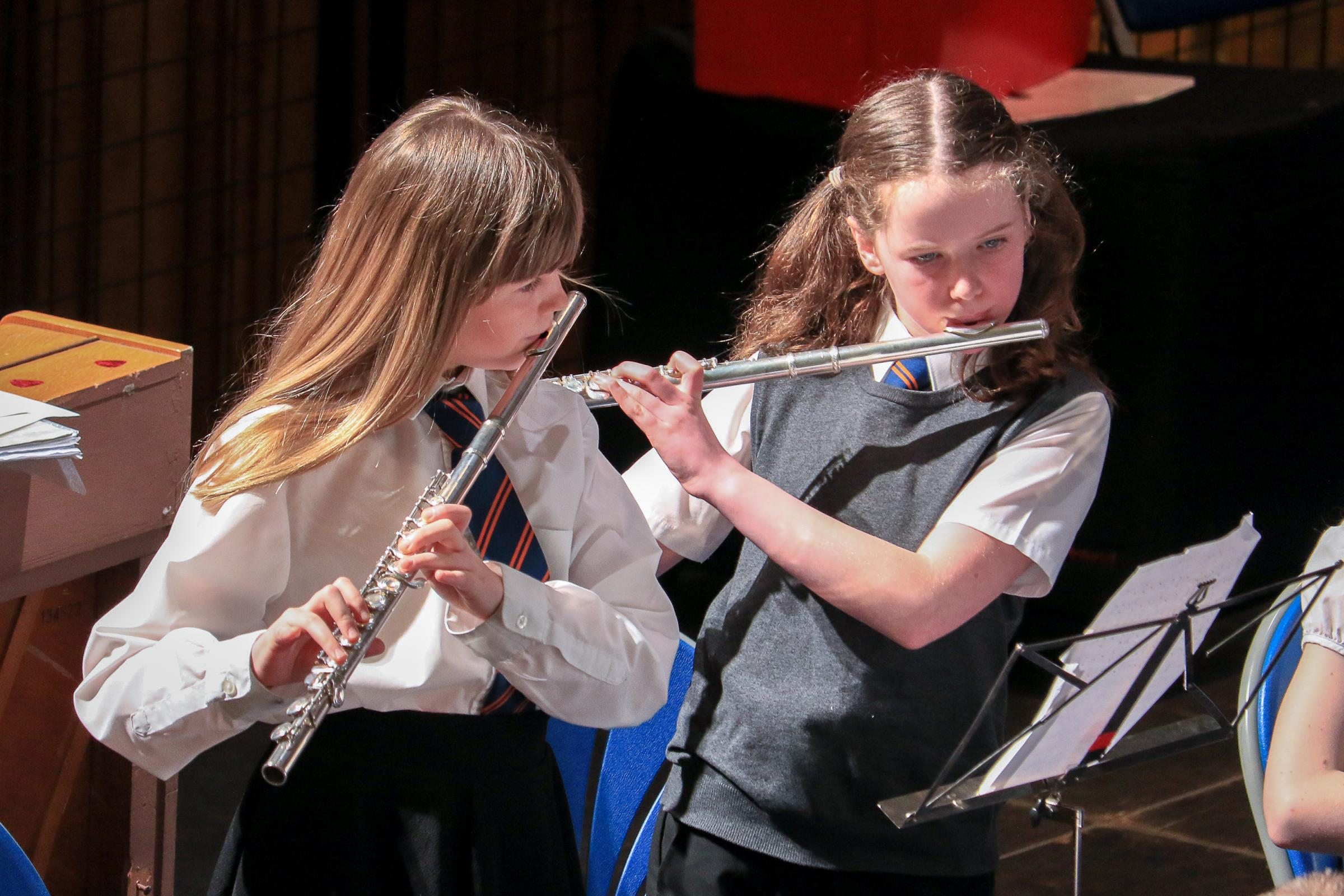 Petition fights new music lesson fees in South Ayrshire
